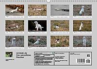 Hermelin - das wieselflinke Raubtier (Wandkalender 2019 DIN A3 quer) - Produktdetailbild 13