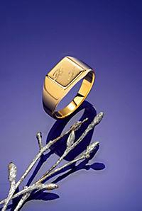 Herrenring, 333er Gelbgold - Produktdetailbild 1