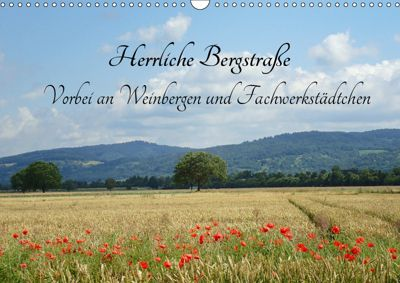 Herrliche Bergstrasse Vorbei an Weinbergen und Fachwerkstädtchen (Wandkalender 2019 DIN A3 quer), Ilona Andersen