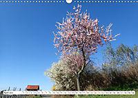 Herrliche Bergstrasse Vorbei an Weinbergen und Fachwerkstädtchen (Wandkalender 2019 DIN A3 quer) - Produktdetailbild 4