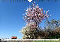 Herrliche Bergstraße Vorbei an Weinbergen und Fachwerkstädtchen (Wandkalender 2019 DIN A4 quer) - Produktdetailbild 4