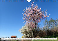 Herrliche Bergstrasse Vorbei an Weinbergen und Fachwerkstädtchen (Wandkalender 2019 DIN A4 quer) - Produktdetailbild 4