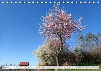 Herrliche Bergstrasse Vorbei an Weinbergen und Fachwerkstädtchen (Tischkalender 2019 DIN A5 quer) - Produktdetailbild 4