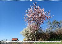 Herrliche Bergstrasse Vorbei an Weinbergen und Fachwerkstädtchen (Wandkalender 2019 DIN A2 quer) - Produktdetailbild 4