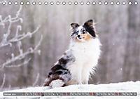 Herzenshunde 2019 (Tischkalender 2019 DIN A5 quer) - Produktdetailbild 1