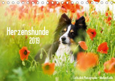 Herzenshunde 2019 (Tischkalender 2019 DIN A5 quer), Madlen Kudla