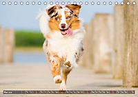 Herzenshunde 2019 (Tischkalender 2019 DIN A5 quer) - Produktdetailbild 5