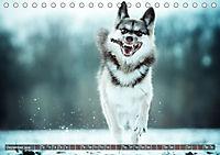 Herzenshunde 2019 (Tischkalender 2019 DIN A5 quer) - Produktdetailbild 12