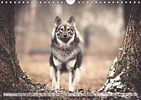Herzenshunde 2019 (Wandkalender 2019 DIN A4 quer) - Produktdetailbild 2
