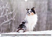 Herzenshunde 2019 (Wandkalender 2019 DIN A4 quer) - Produktdetailbild 1