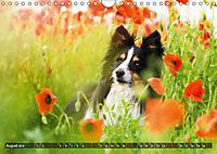 Herzenshunde 2019 (Wandkalender 2019 DIN A4 quer) - Produktdetailbild 8