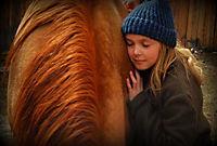 Herzenssache - Ein Pferd für die ganze Familie - Produktdetailbild 2