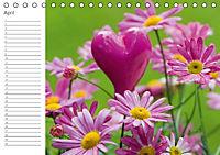 Herzig / Geburtstagskalender (Tischkalender immerwährend DIN A5 quer) - Produktdetailbild 4