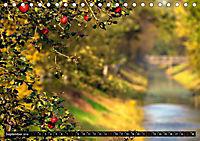 Hier und jetzt im Teufelsmoor - 2019 (Tischkalender 2019 DIN A5 quer) - Produktdetailbild 9