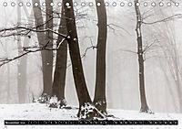 Hier und jetzt im Teufelsmoor - 2019 (Tischkalender 2019 DIN A5 quer) - Produktdetailbild 11