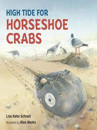 High Tide for Horseshoe Crabs, Lisa Kahn Schnell