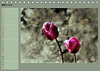 Himmelsblüten - mit Planer (Tischkalender 2019 DIN A5 quer) - Produktdetailbild 3