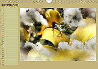 Himmelsblüten - mit Planer (Wandkalender 2019 DIN A4 quer) - Produktdetailbild 9