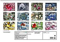 Himmelsblüten (Wandkalender 2019 DIN A2 quer) - Produktdetailbild 13