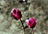 Himmelsblüten (Wandkalender 2019 DIN A3 quer) - Produktdetailbild 3