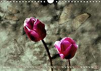 Himmelsblüten (Wandkalender 2019 DIN A4 quer) - Produktdetailbild 3