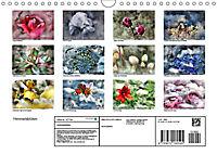 Himmelsblüten (Wandkalender 2019 DIN A4 quer) - Produktdetailbild 13