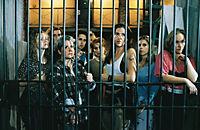 Hinter Gittern - Der Frauenknast - Staffel 2.2 - Folgen 36 - 44 - Produktdetailbild 3