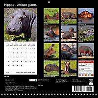 Hippos - African giants (Wall Calendar 2019 300 × 300 mm Square) - Produktdetailbild 13