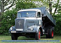 Historische Nutzfahrzeuge (Tischkalender 2019 DIN A5 quer) - Produktdetailbild 8