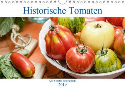 Historische Tomaten - Alte Schätze neu entdeckt (Wandkalender 2019 DIN A4 quer), Dieter Meyer