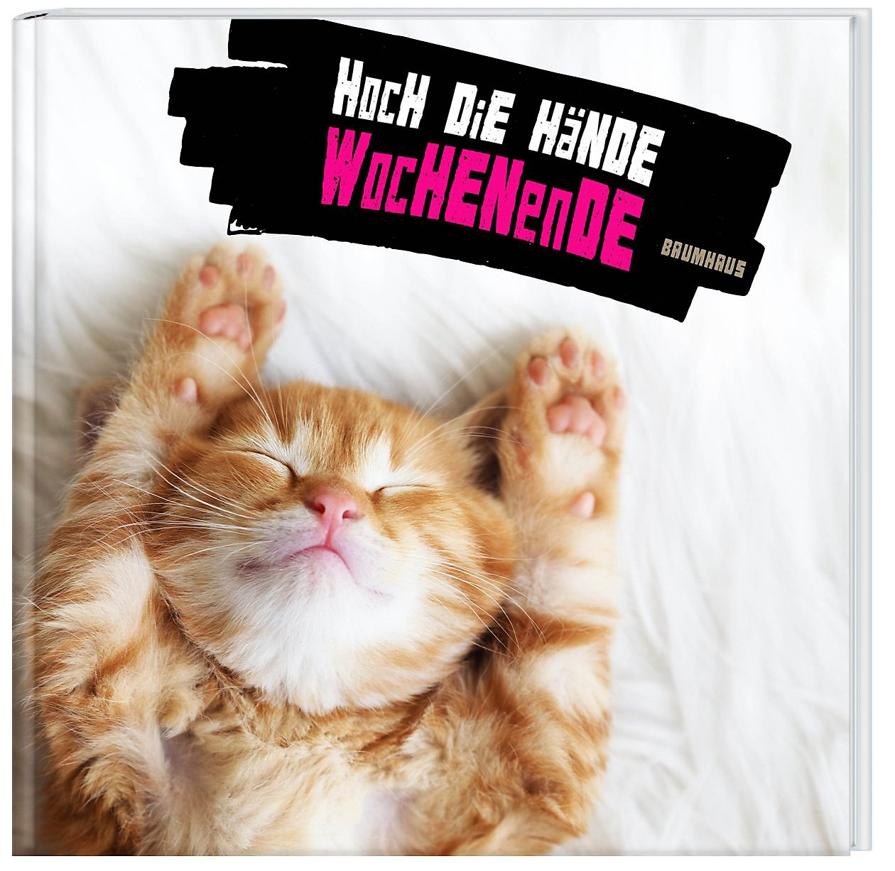 Katze Wochenende