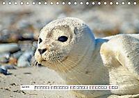 Hochsee-Insel Helgoland (Tischkalender 2019 DIN A5 quer) - Produktdetailbild 4