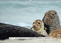 Hochsee-Insel Helgoland (Wandkalender 2019 DIN A2 quer) - Produktdetailbild 8