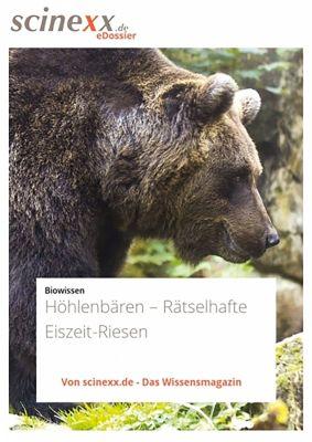 Höhlenbären, Dieter Lohmann