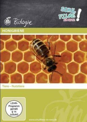 Honigbiene, 1 DVD