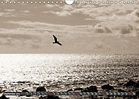 Horizons by the sea (Wall Calendar 2019 DIN A4 Landscape) - Produktdetailbild 9