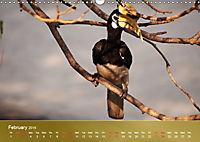 Hornbills from Southeastern Asia (Wall Calendar 2019 DIN A3 Landscape) - Produktdetailbild 2