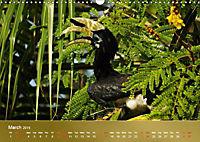 Hornbills from Southeastern Asia (Wall Calendar 2019 DIN A3 Landscape) - Produktdetailbild 3