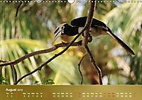 Hornbills from Southeastern Asia (Wall Calendar 2019 DIN A3 Landscape) - Produktdetailbild 8