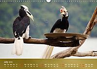 Hornbills from Southeastern Asia (Wall Calendar 2019 DIN A3 Landscape) - Produktdetailbild 7