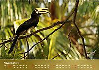 Hornbills from Southeastern Asia (Wall Calendar 2019 DIN A3 Landscape) - Produktdetailbild 11