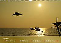 Hornbills from Southeastern Asia (Wall Calendar 2019 DIN A3 Landscape) - Produktdetailbild 6