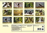 Hornbills from Southeastern Asia (Wall Calendar 2019 DIN A3 Landscape) - Produktdetailbild 13
