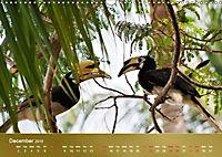 Hornbills from Southeastern Asia (Wall Calendar 2019 DIN A3 Landscape) - Produktdetailbild 12