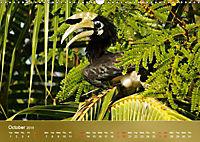 Hornbills from Southeastern Asia (Wall Calendar 2019 DIN A3 Landscape) - Produktdetailbild 10