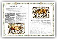 Horoskop der Liebe: Jungfrau - Produktdetailbild 5