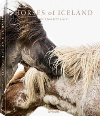 Horses of Iceland - Guadalupe Laiz |