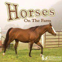 Horses on the Farm, Joanne Mattern