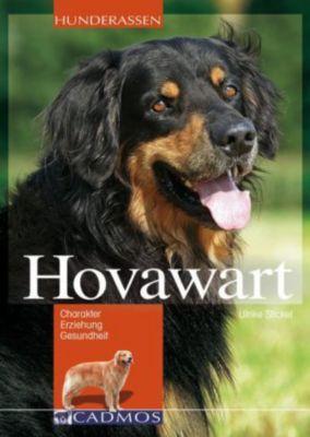 Serviette Hovawart