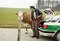 Hubert und Staller: Die ins Gras beissen - Produktdetailbild 6